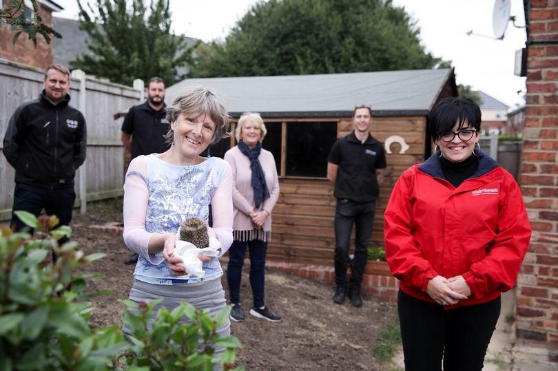 Teesside housing company provide new outbuilding for sick and injured HEDGEHOGS